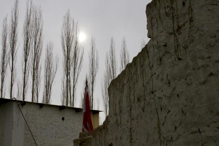 Winterladakh: Baumreihe hinter Gebäudeteilen in Leh