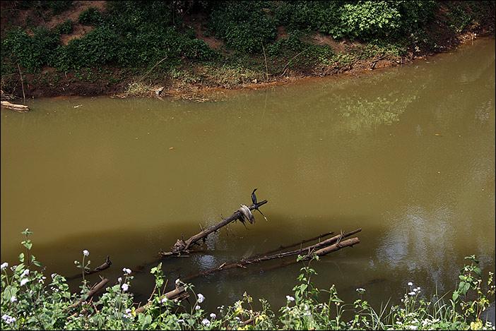 Fluss in Thekkumthara