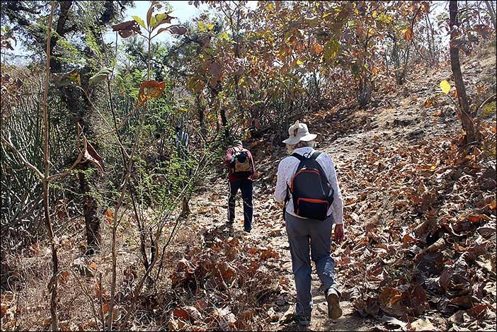 Wandern in Südrajasthan
