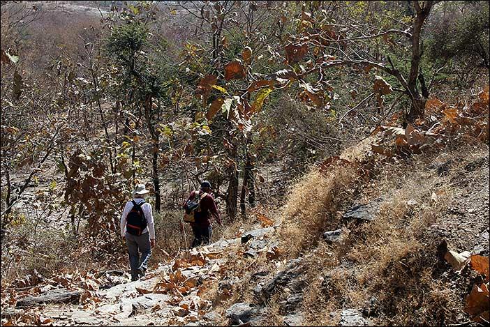 Wandernde in Südrajasthan