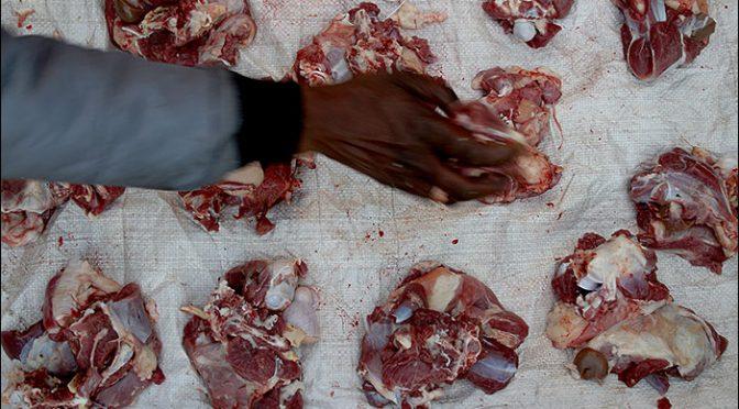 Fleischhaufen