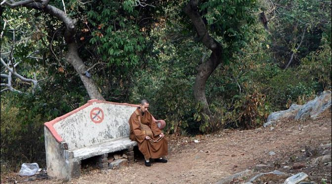 Mönch auf Bank am Geierberg in Rajgir