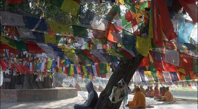 Meditierende in Lumbini/Nepal